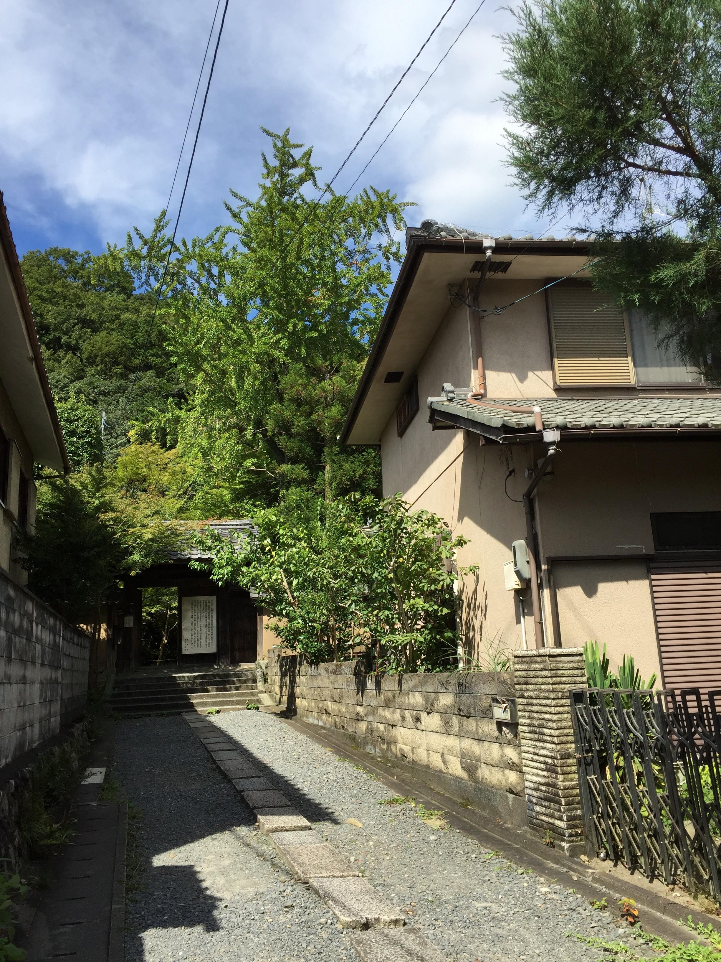 曲がったとこ玄関までの道がいい感じIMG_0229