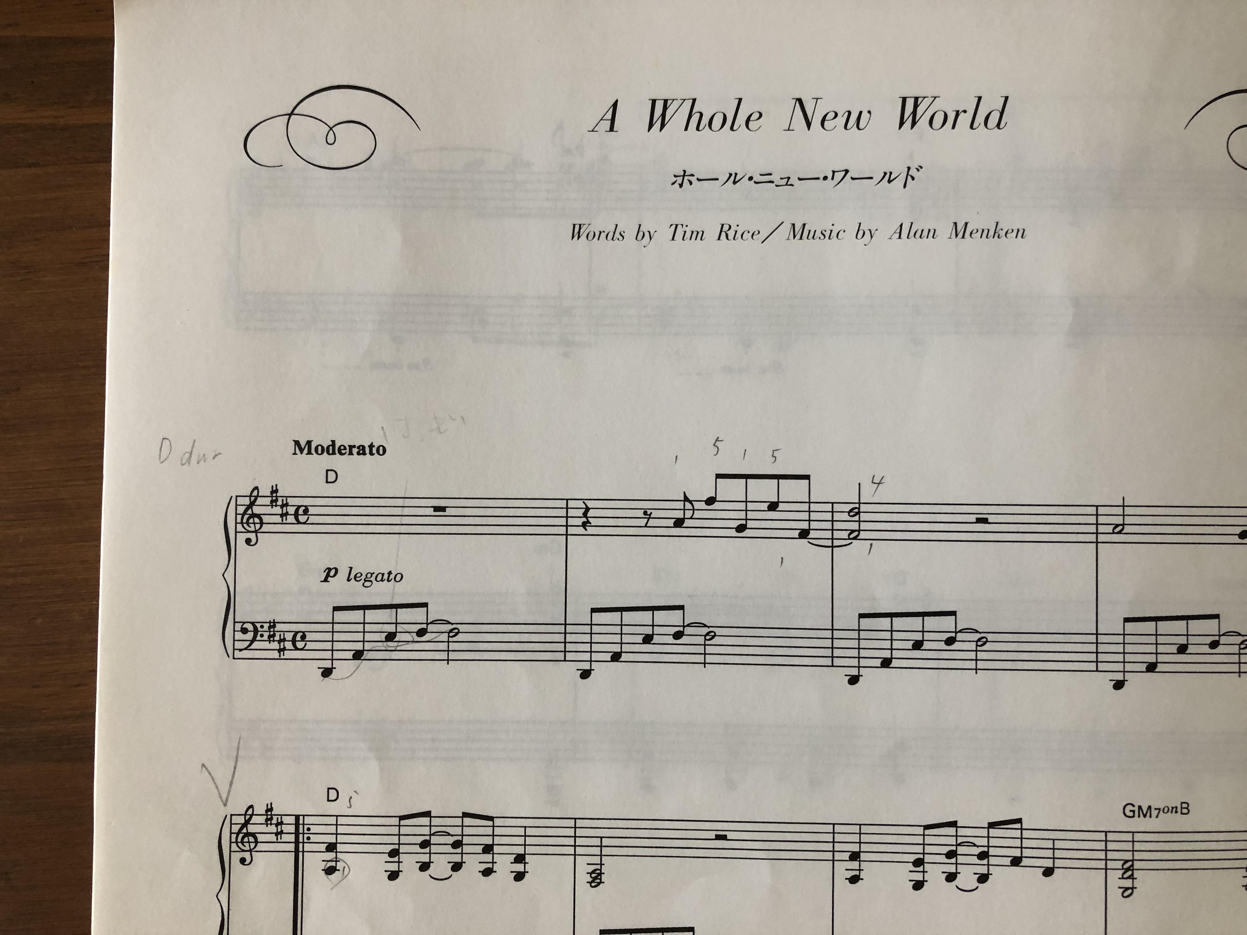 ア ホール ニュー ワールド 歌詞